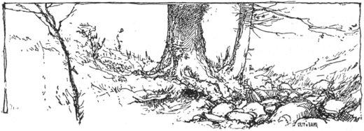 эстонская сказка
